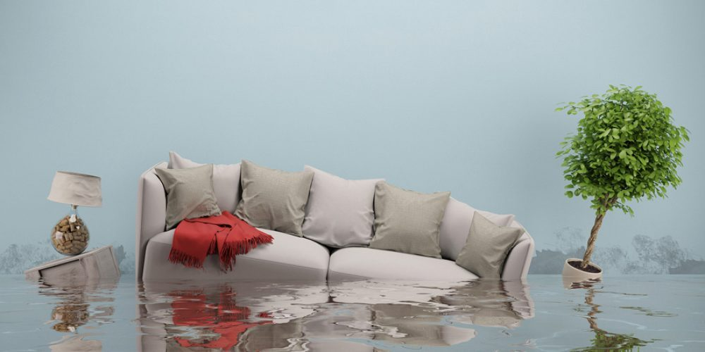 First Help for Your Flooding House